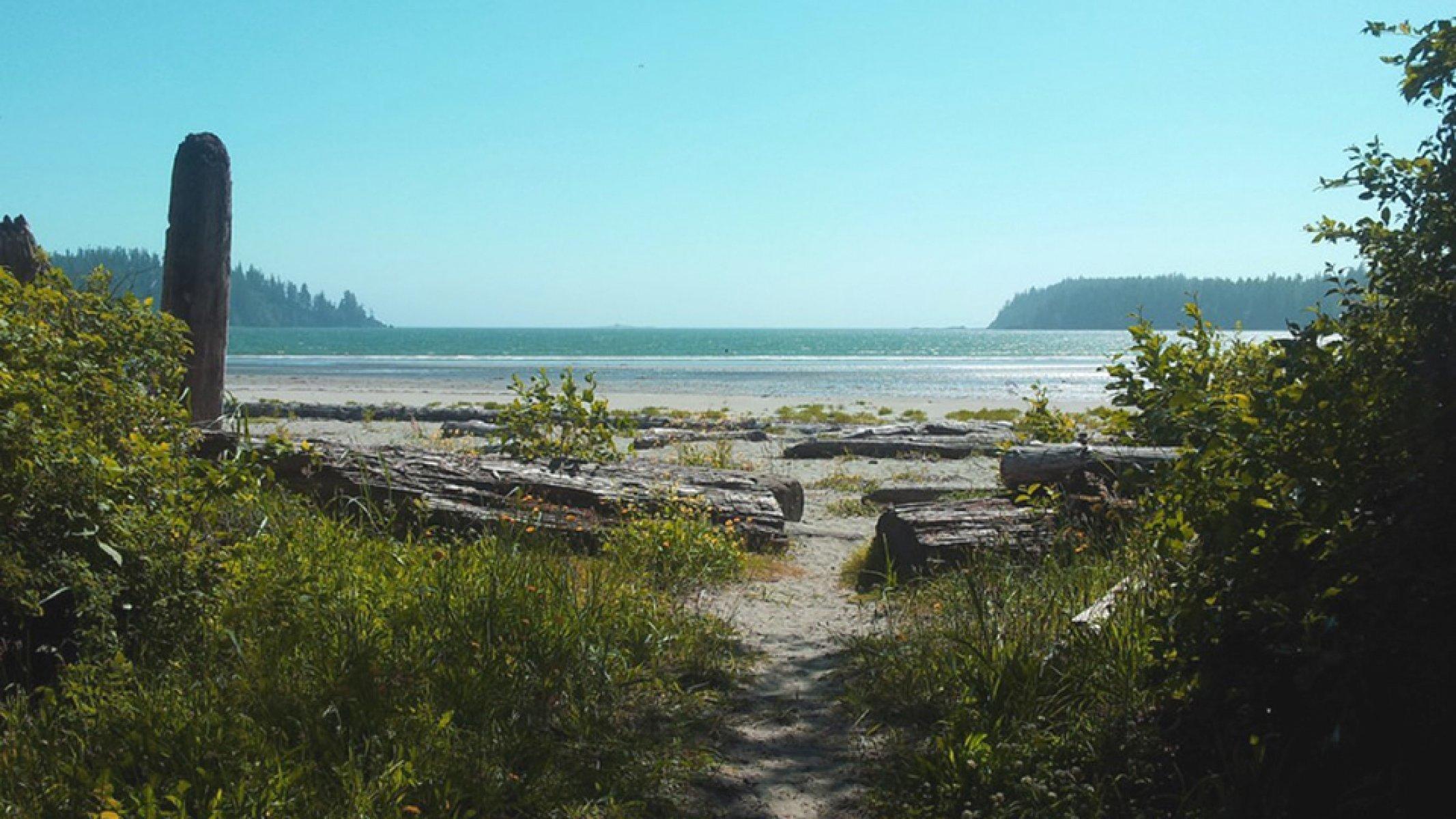 Beach view of Pachena Bay